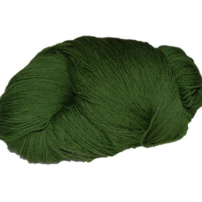 skein of superwash soft lambswool in Kerry Green